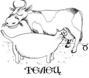 Про Тельцов! (вредные советы)